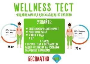 Wellness-Test